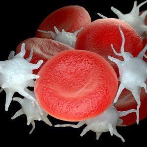 Vampir-Lifting (PRP - Therapie) - Blutplasma