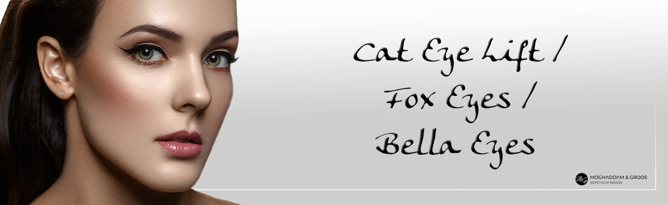 Cat Eye Lift Banner